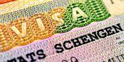 Шенген визы. Оплата по факту получения!!!